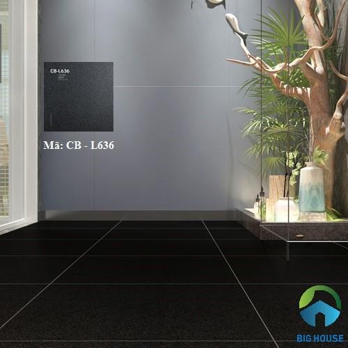 mẫu gạch lát nền màu đen 1