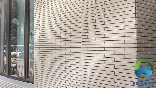 gạch thẻ ốp tường màu trắng 2