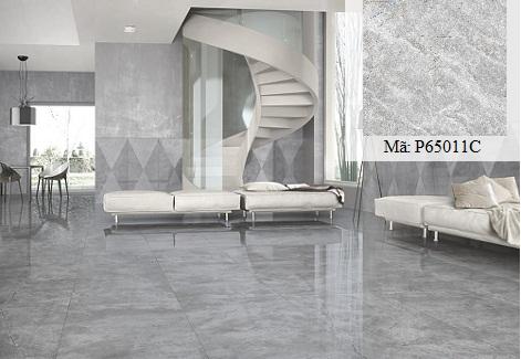 Gạch giả đá hoa cương 60x60 P65011C