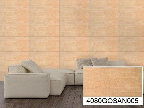 mẫu gạch ốp phòng khách vân gỗ đồng tâm