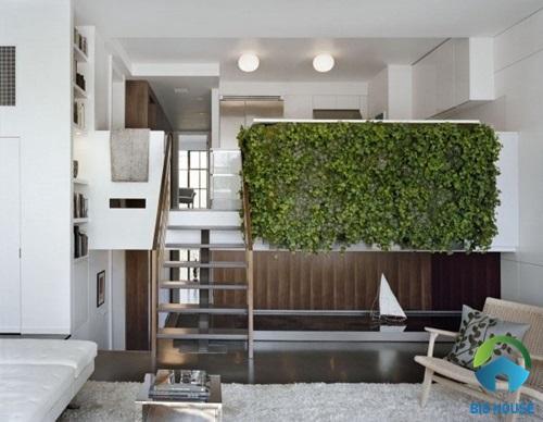 Thiết kế nhà gác lửng hiện đại với không gian xanh mát mắt