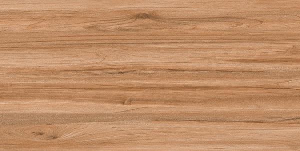 Mẫu gạch Ý Mỹ60x120 P6125001C