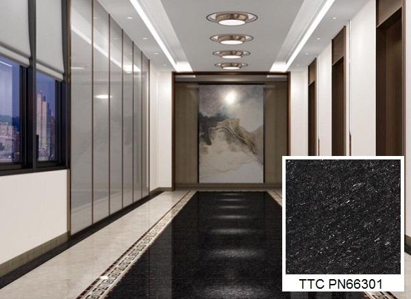 gạch lát nền 60x60 màu đen ttc PN66301 mài nano